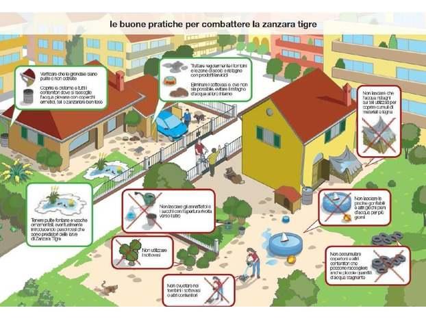 Disinfestazione contro le zanzare : date del secondo passaggio